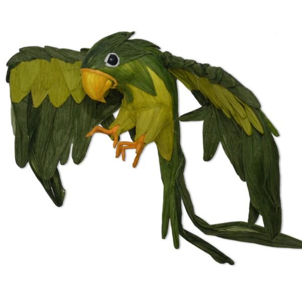 Papagei Grün, offene Flügel