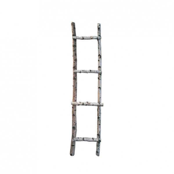 Sitzplan Leiter Birke